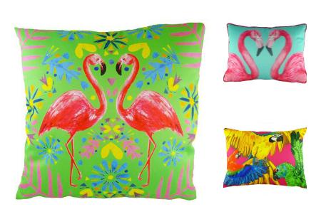 <b> Editor&#8217;s pick: </b> Flamingos v parrots
