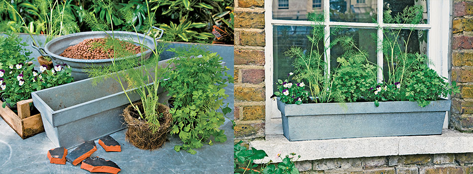 <b> Gardening task for May: </b> How to make a Herb Windowbox