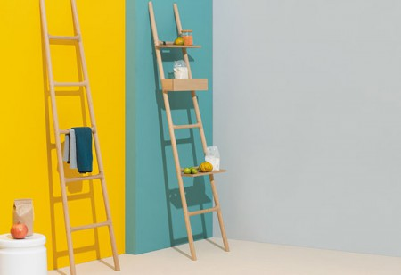 <b> Editor's pick: </b> The multipurpose leaning ladder