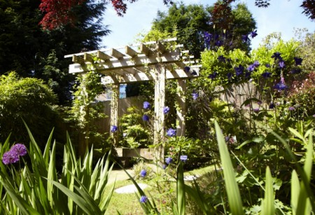 <b> Hot Colour: </b> How to get your garden looking vibrant for July